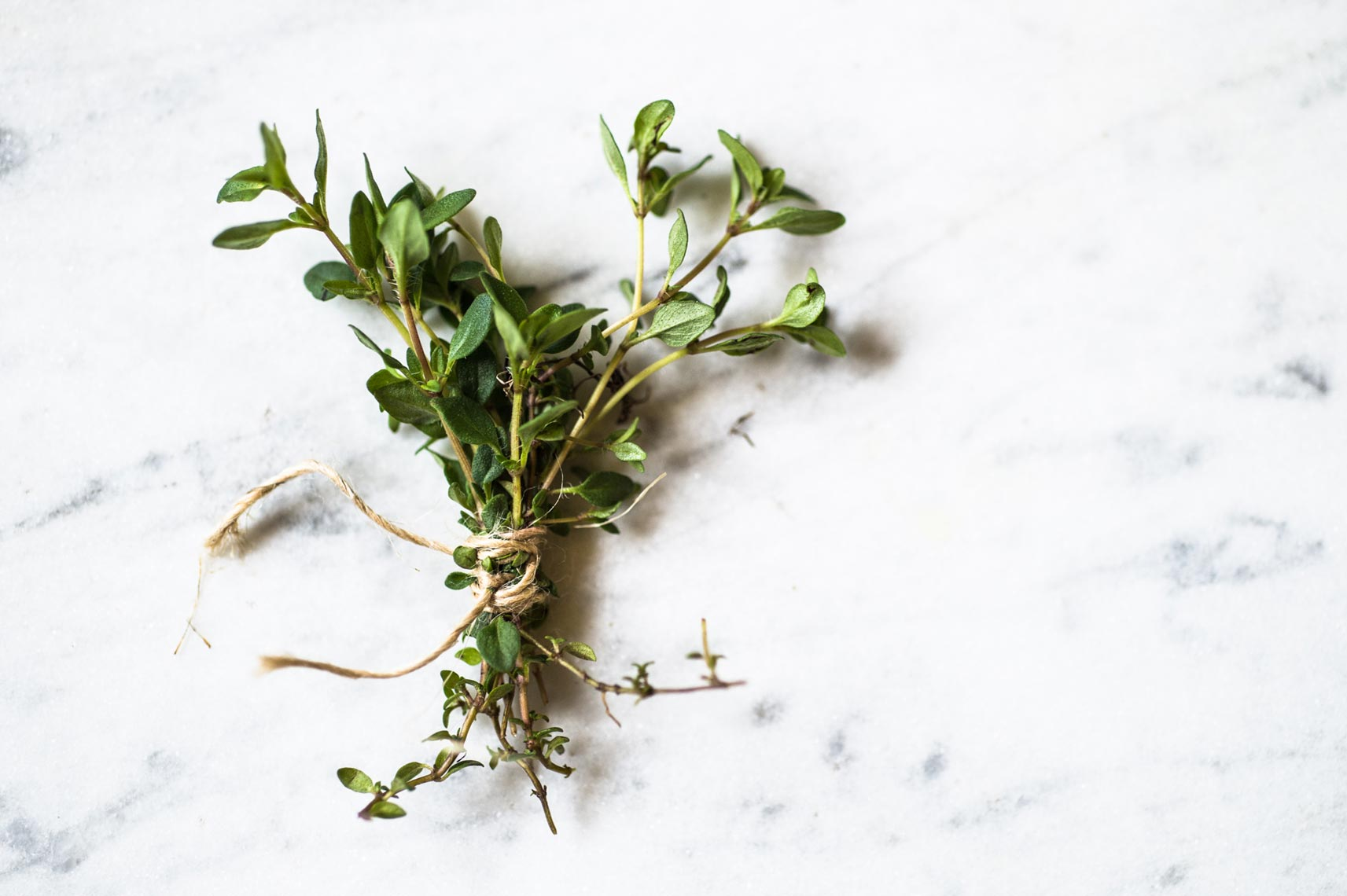 Wild Thyme Hudson Valley Foraged Food Photographer Jennifer May