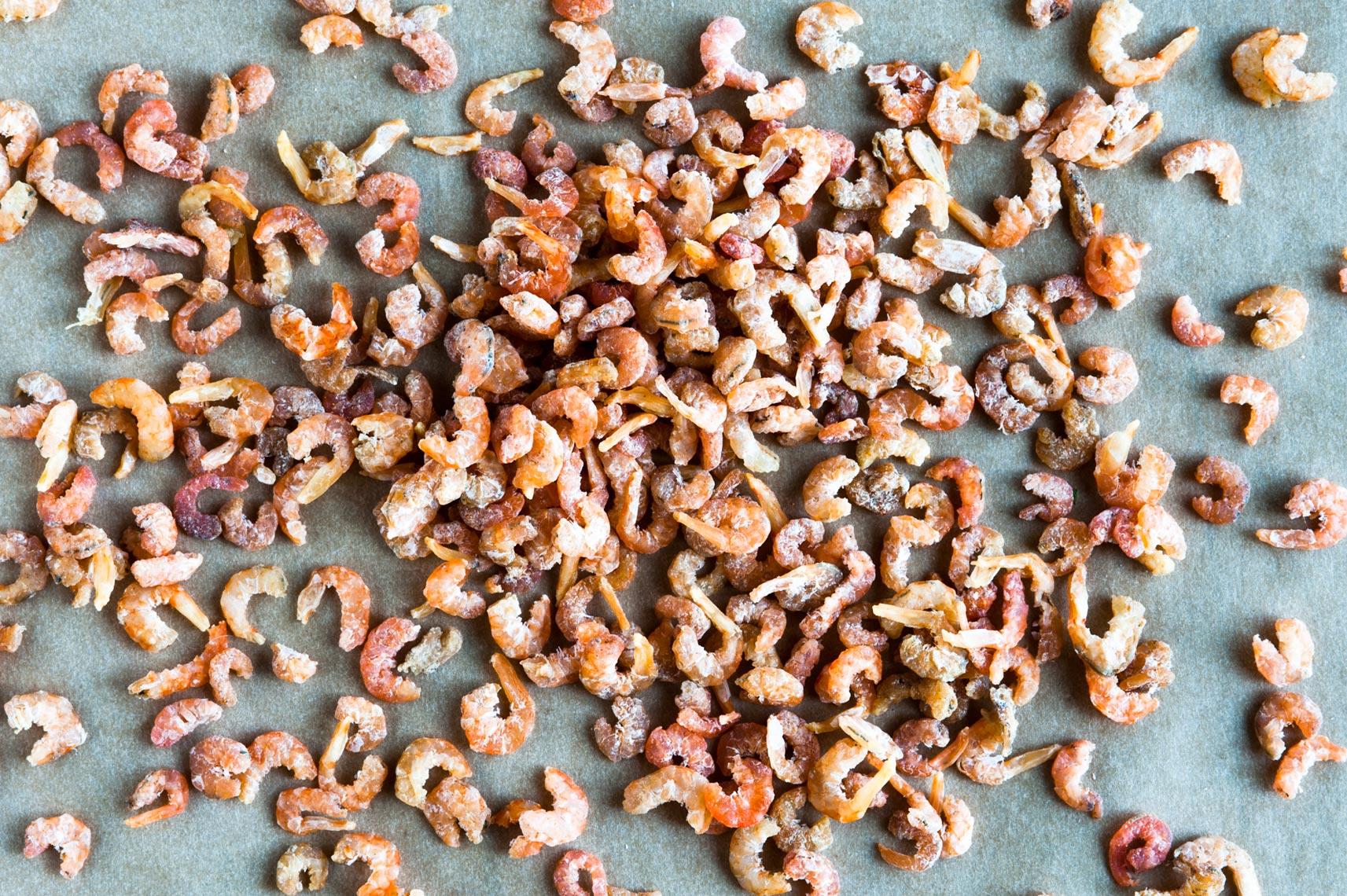 NYC Food Photographer Jennifer May Tiny Dried Shrimp